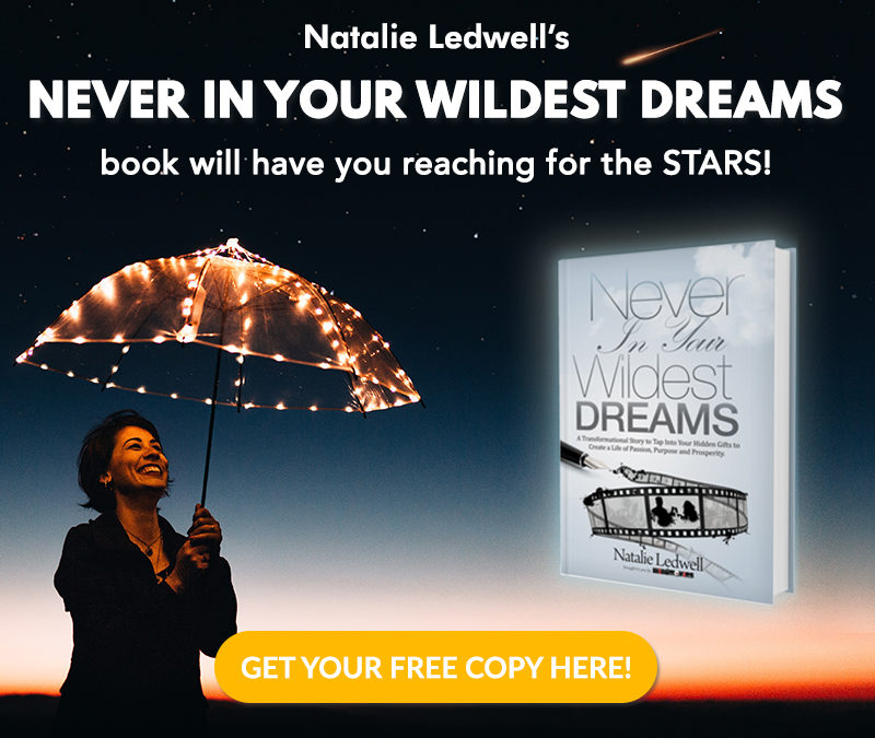 Never In Your Wildest Dreams (book giveaway)