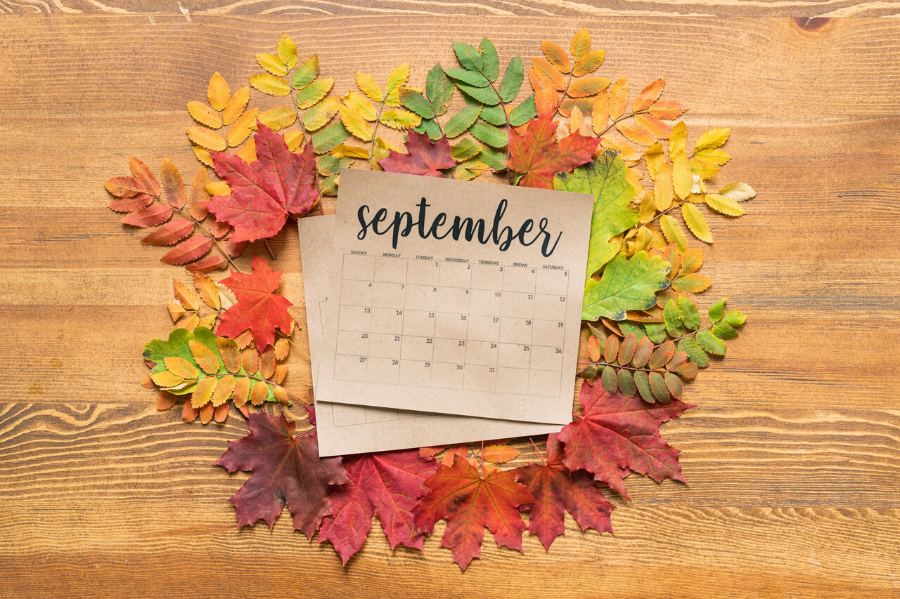 Use the Energies Of September To Discover Your Real Purpose