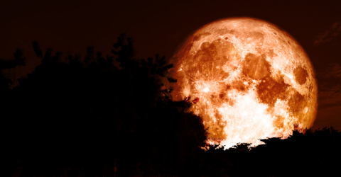 Harness the Full Moon Energy this October 20 and Manifest Your Desires